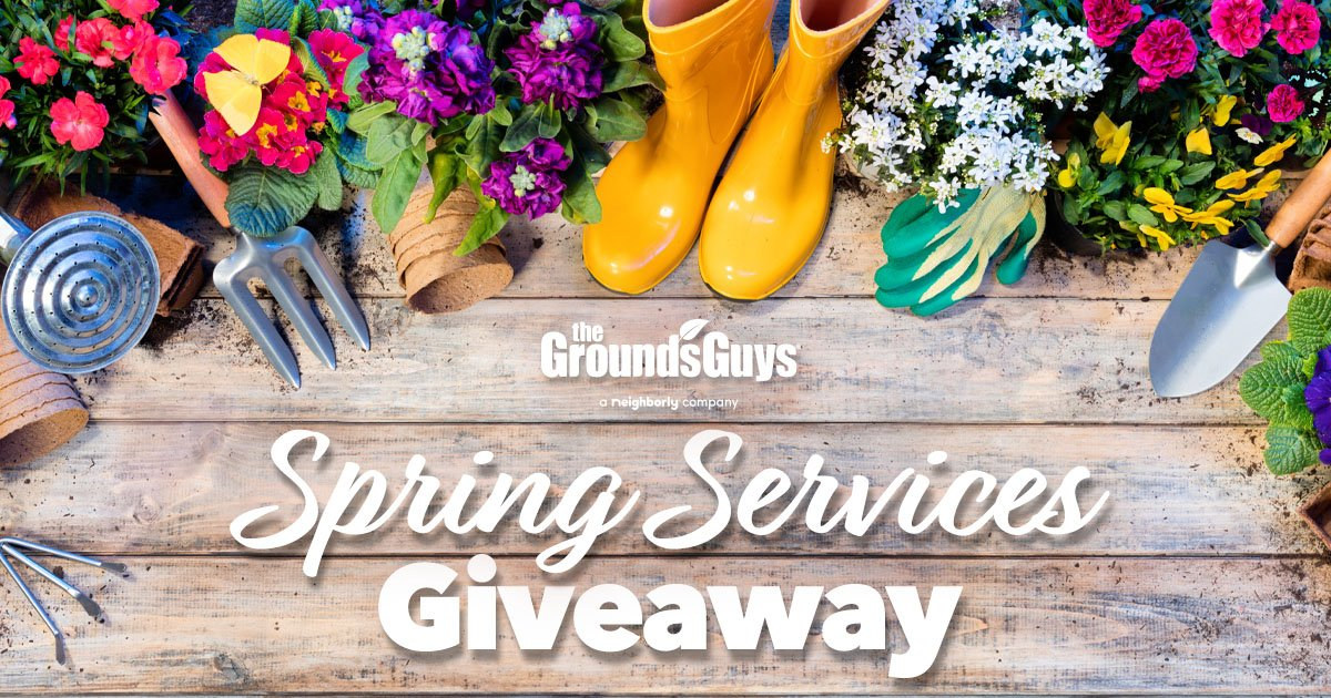 GUY-SM-FB-SpringServicesGiveaway-0319-PreviewImage