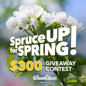 GUY-SM-Spring-Contest-01-REV-0218